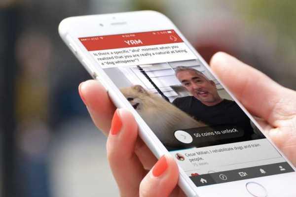 Yam Q & A app
