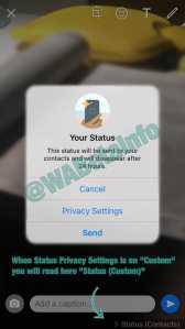 WhatsApp Beta New Status Alert