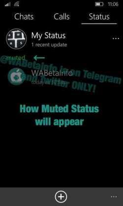 WhatsApp Beta Status Features