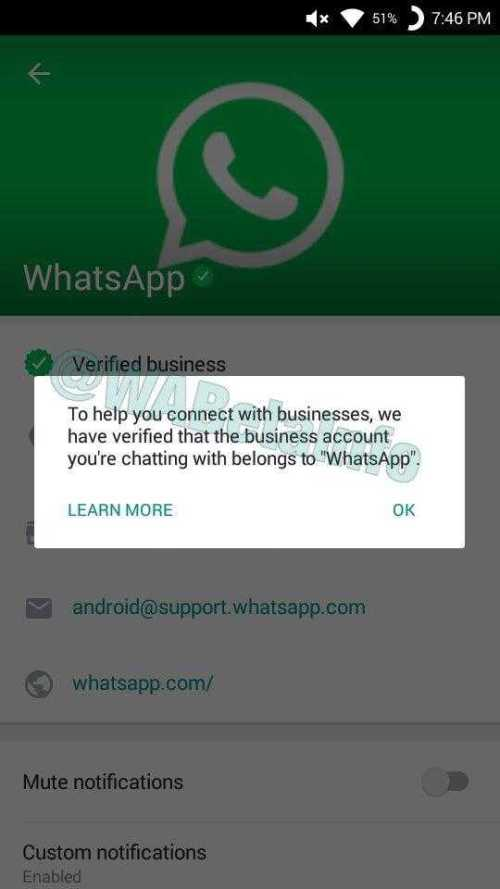 Whatsapp Should Allow Users to Decline Group Invitations
