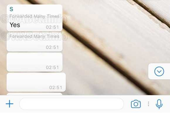 Whatsapp Get Rid of Spam Messages in Groups