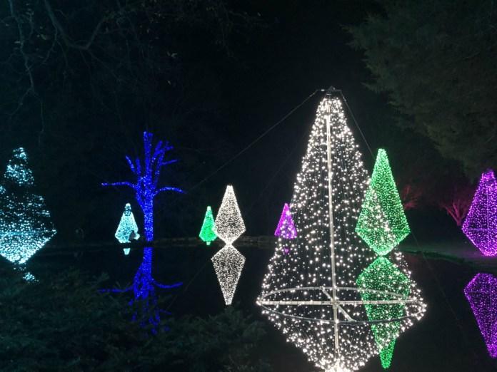 Cheekwood holiday LIGHTS