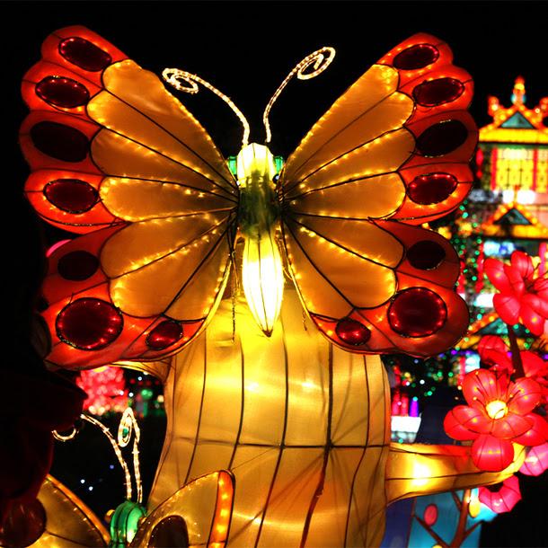 Zoolumination Chinese Festival Lights
