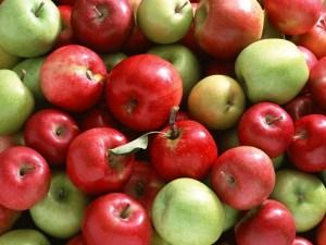 Elma Nasıl Saklanır