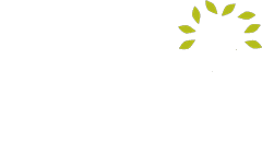 Great psychology schools