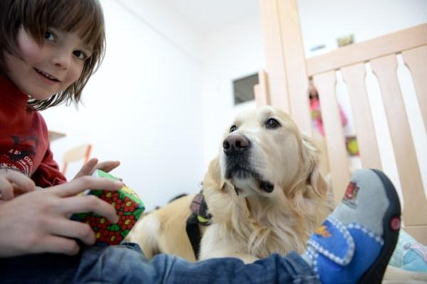 caini-de-terapie-UCOS-autism-5