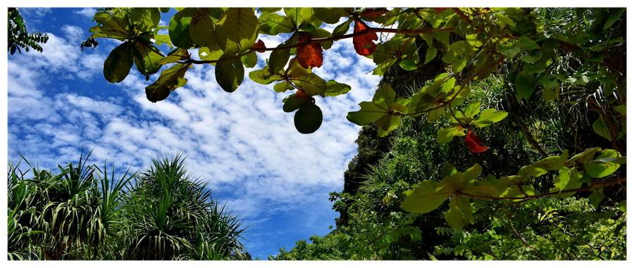 Azja-Tajlandia-bangkok-phuket-phi-phi-buddha-James-Bond-Island-oraz-Leonardo-DiCaprio-Island