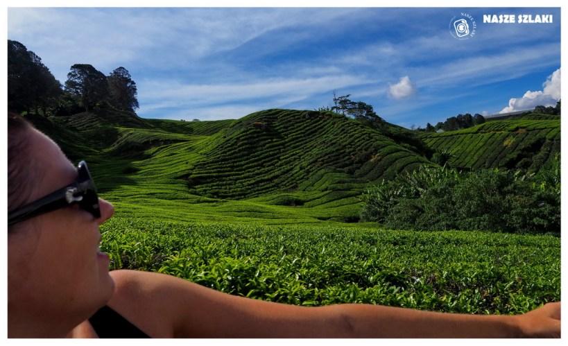 Cameron Highlands – Malezja, zmęczeni przedzieraniem się przez dżunglę ale dumni z powodzenia