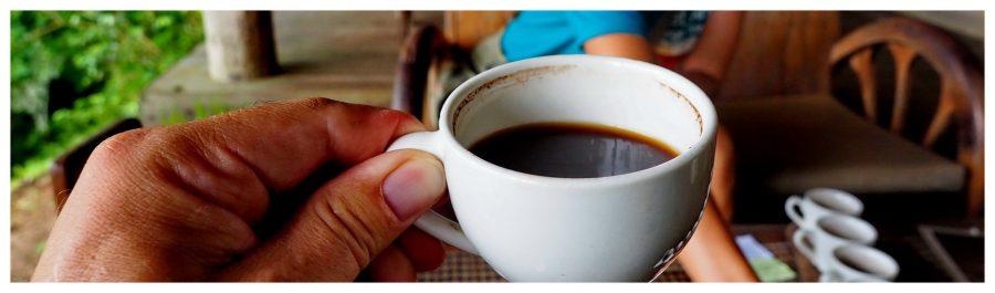 Filiżanka kawy Luwak z Bali wygląda niepozornie ale warta jest krocie