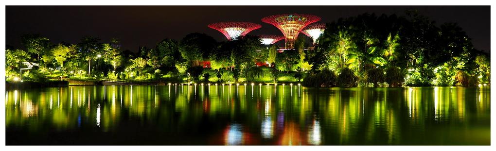 Gardens by the Bay w Singapurze. Popularna atrakcja turystyczna i nieodzowny przystanek dla podróżników. Teren ogrodu jest bezpieczny i przyjazny do zwiedzania.