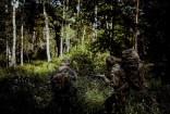 szkolenie-zintegrowane-zolnierzy-82-batalionu-lekkiej-piechoty-z-inowroclawia-2021_0007