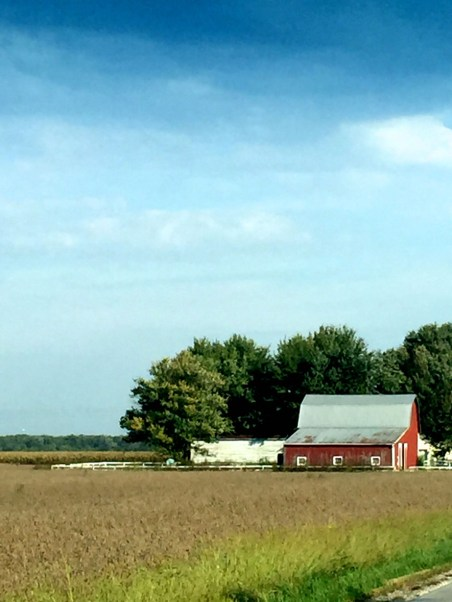 Farm Fort Wayne, Mama ía
