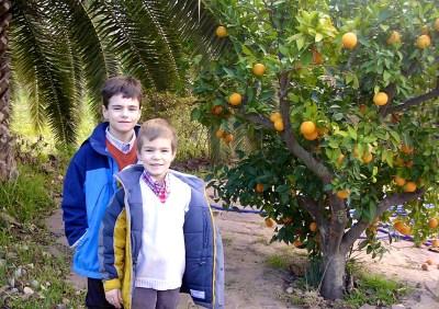 Matthew e Ethan en el Taron, Mama ía blog