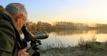 Hollogne-sur-Geer étang ornithologue