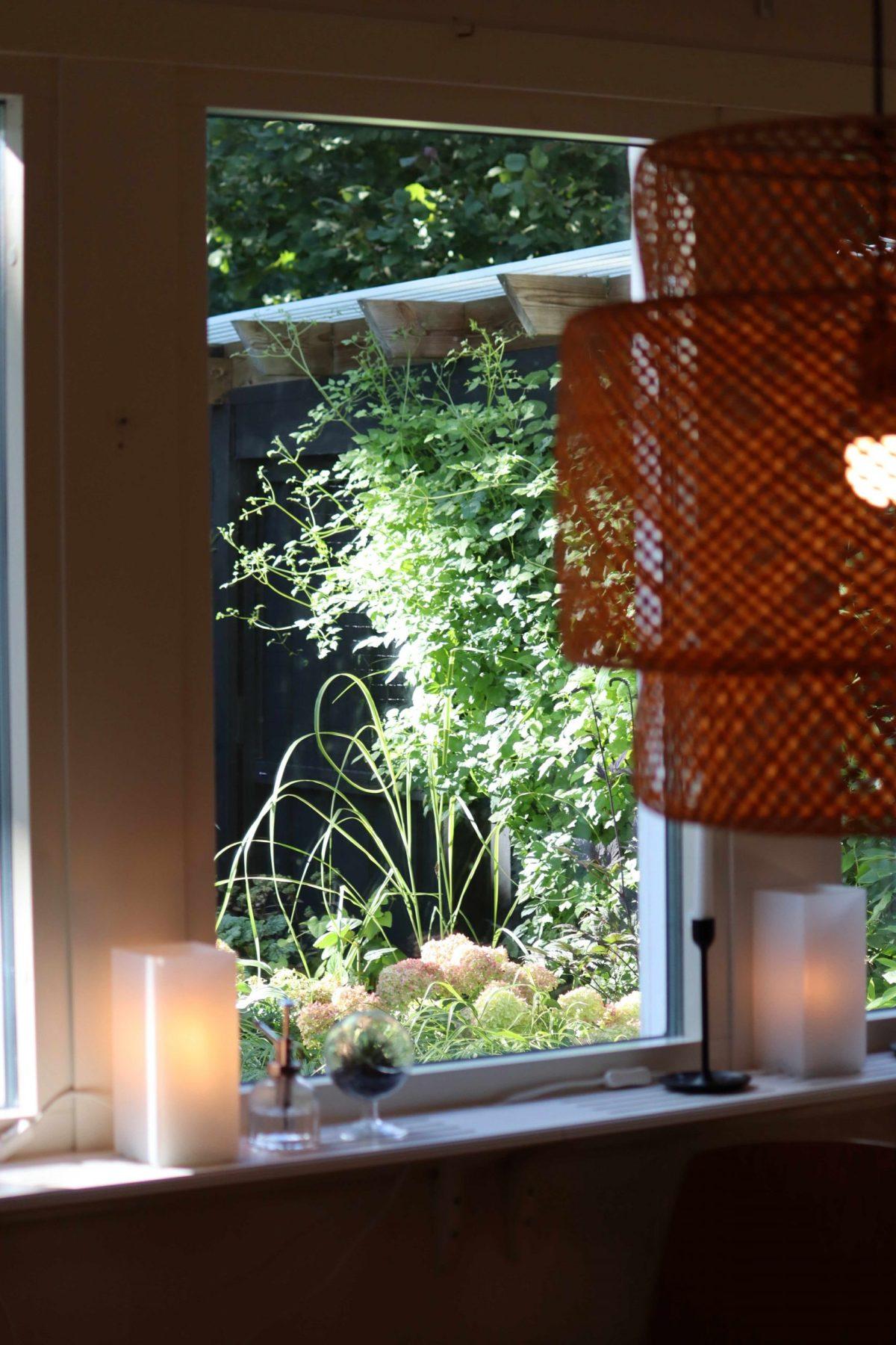 Natalia Lindberg Trädgårdsdesign - augustiljus i trädgården Hortensia Little Lime  höstsilverax hakonegräs