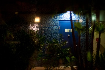 A blue door with a blue mosaic wall hidden behind tropical plants in Miami, FL.