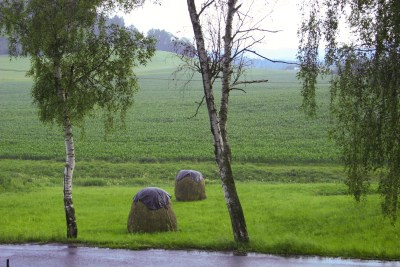 Two hay mounds covered in plastic on a rainy day in Zumperk, Czech Republic.