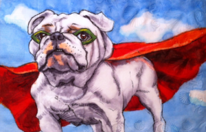 bulldog with red cape