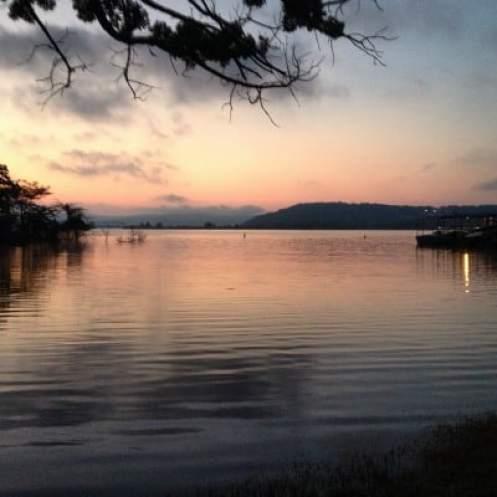 Summer Scene: Morning on Table Rock Lake