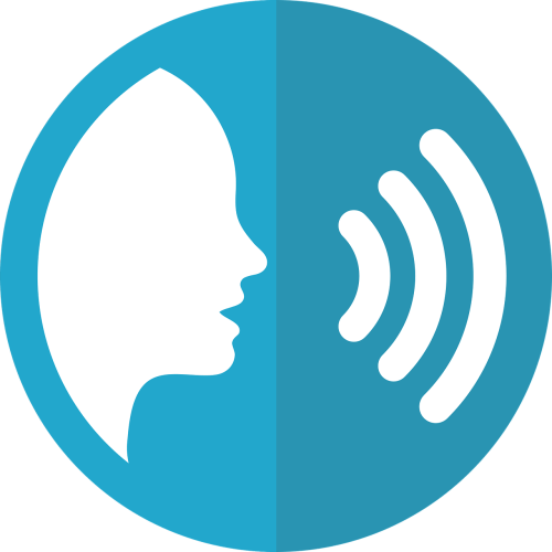 SEO melbourne voice search