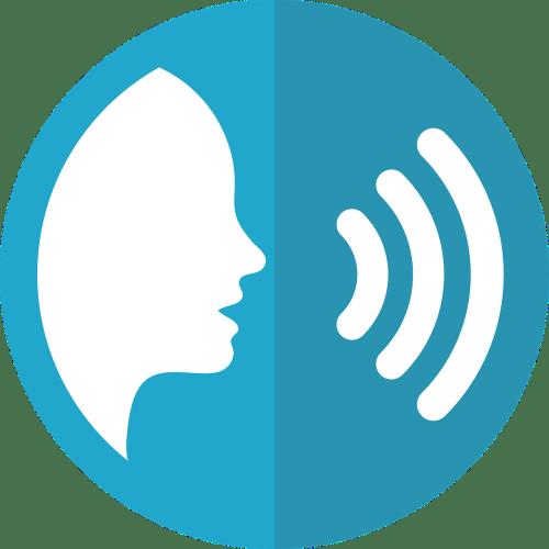 SEO melbourne voice search