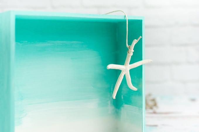 hanging starfish