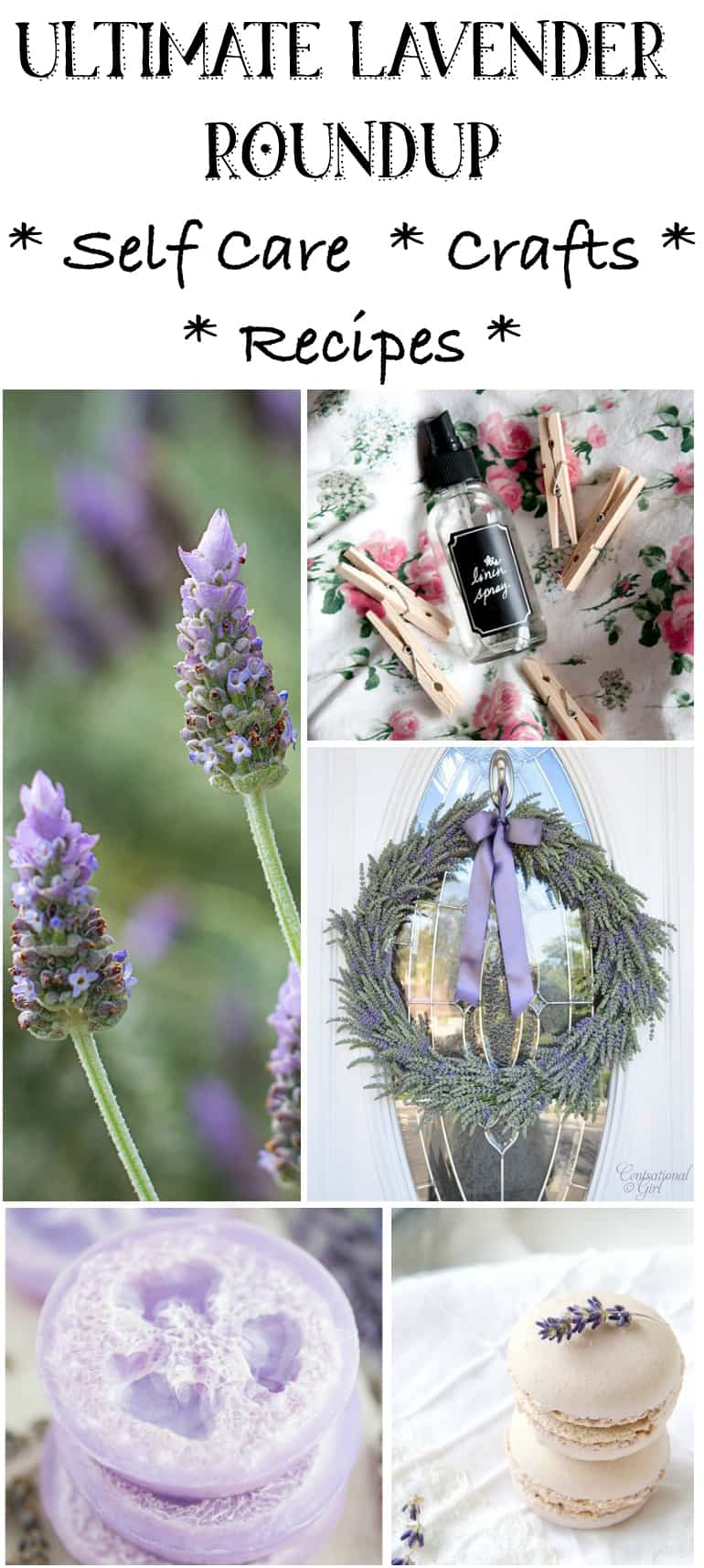 Ultimate Lavender Crafts Tutorials Roundup – Lavender Crafts to DIY