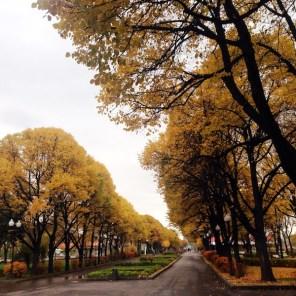 Gorky Park Mosca viale