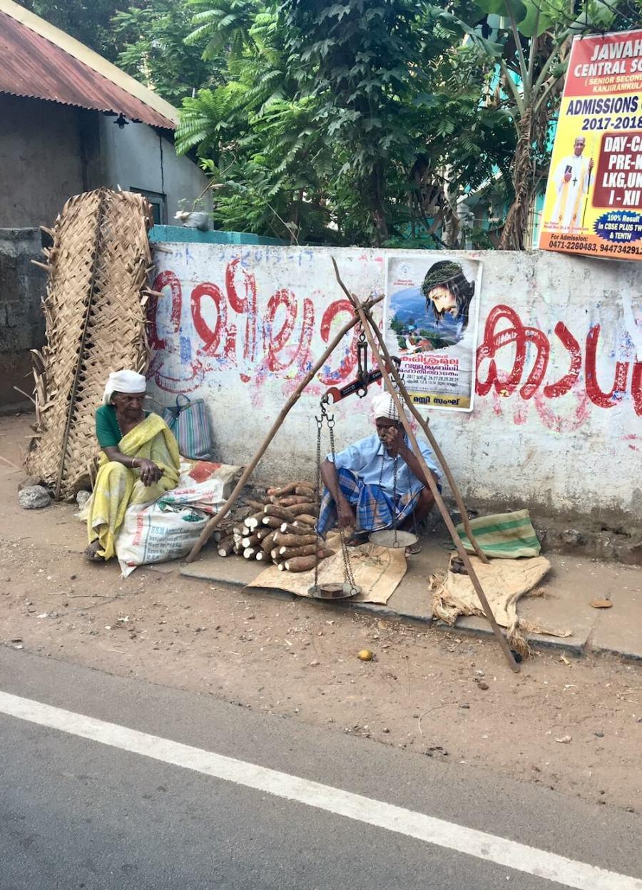 Путешествие в Кералу, впечатления