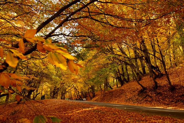 idee per un week end a due foliage