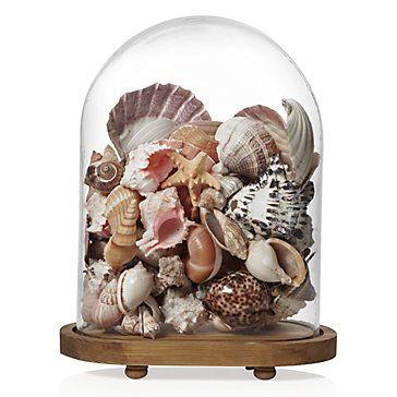 Idee Low cost per personalizzare la casa d'estate http-::www.zgallerie.com:p-11727-oval-bell-jar.aspx