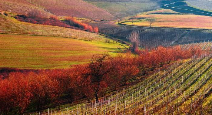 Природные заповедники Италии, Barolo