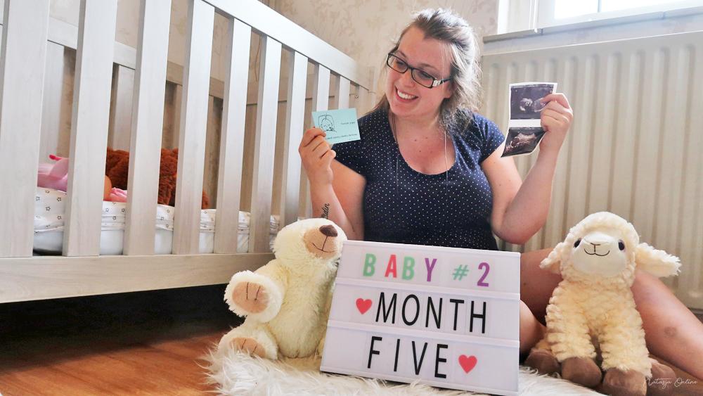 zwanger maand 5