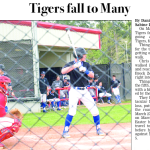 Sports-tigers fall to many