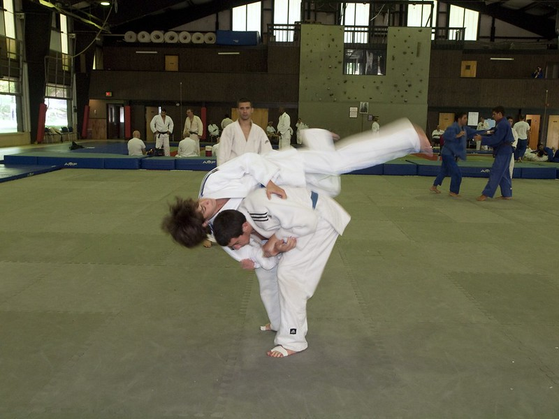 Police Reform: Can Martial Arts Training Lead To Safer Arrests?