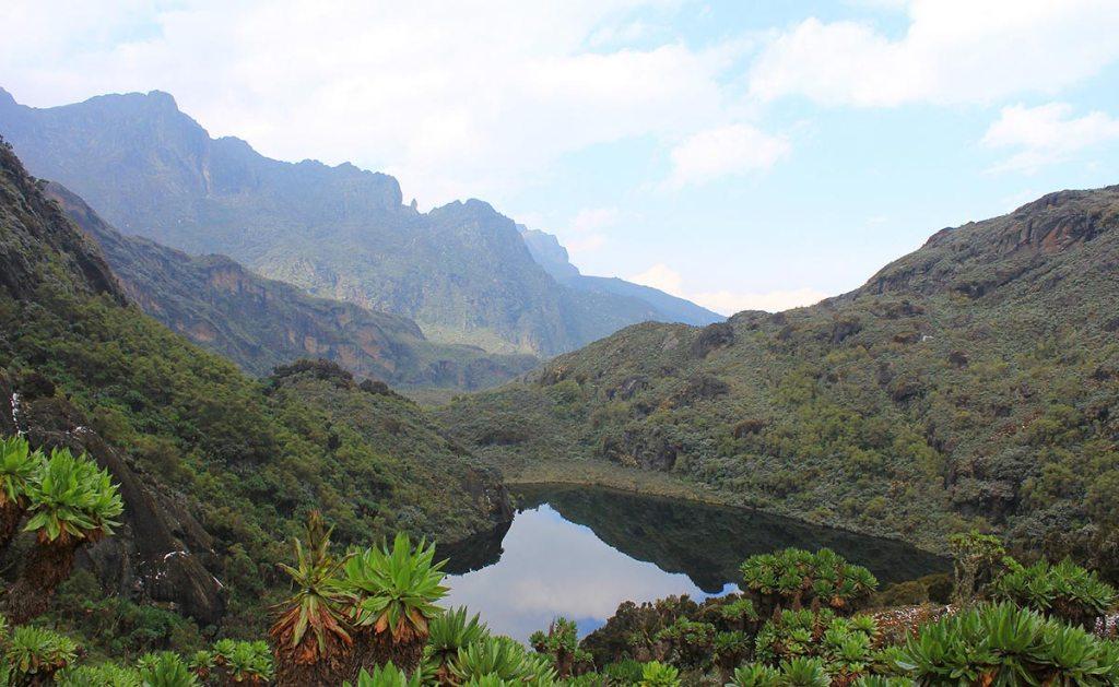 mount stanly rwenzori mountains national park