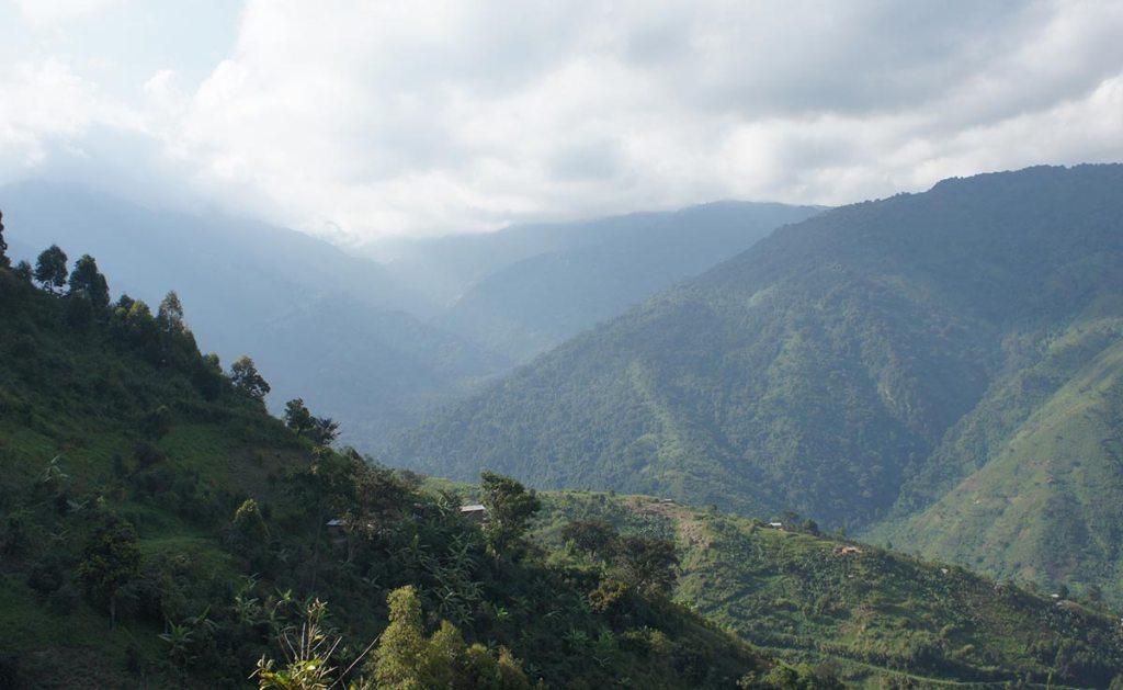 mountain hiking in rwenzori mountains national park