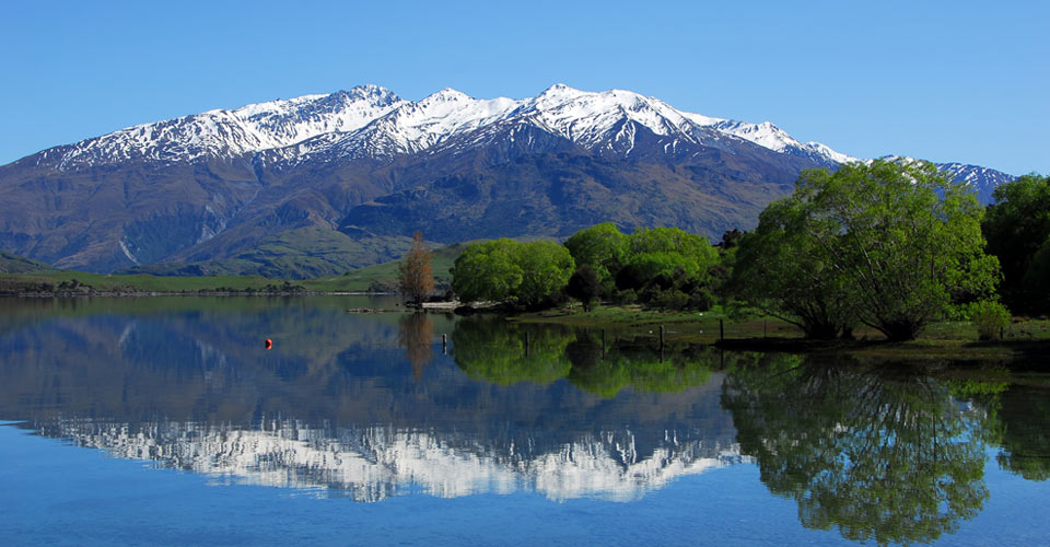 Image result for new zealand nature