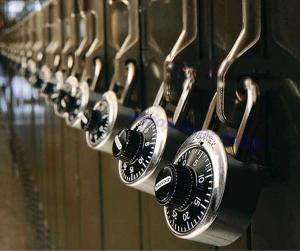 Picture of locks the editor/manager of this site found in Google Images on Inkfrog.com