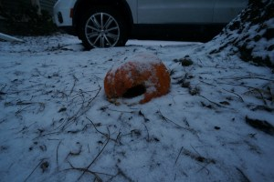 So this pumpkin has been sitting near my apartment since just after Halloween.