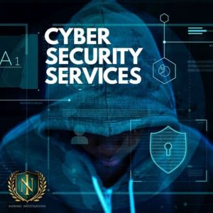 Cyber Investigations