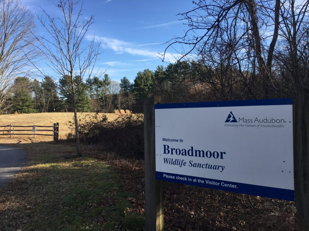 Broadmoor, Natick
