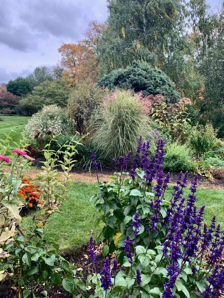 Natick garden, Karen Coffman