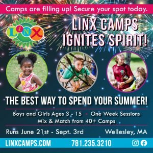 LINX, summer camp
