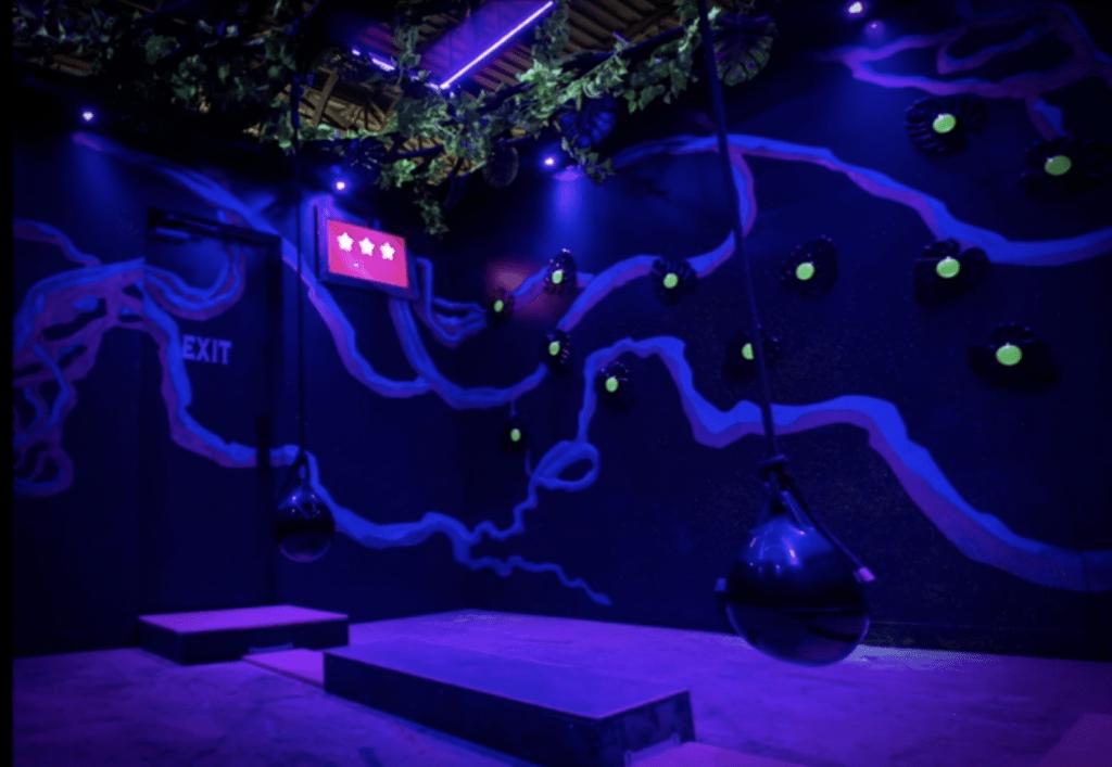 Level99 Tarzan room