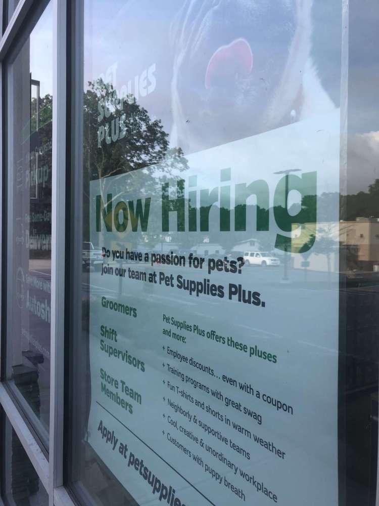 pet supplies hiring