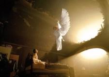 Il primato dell'uomo sugli angeli (Pavel Evdokimov)