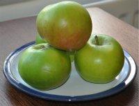 Bramley Apple Week