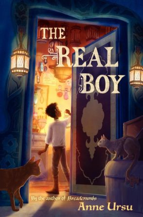 Anne Ursu, The Real Boy book cover