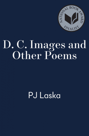 cover for D. C. Images And Other Poems by P J Laska